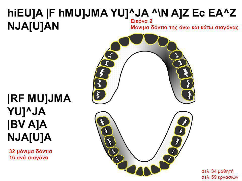 hiEU]A |F hMU]JMA YU]^JA ^\N A]Z Ec EA^Z NJA[U]AN